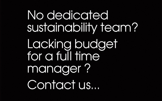 Non dedicated sustainability team?